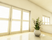 Lily of the Valley in studio apartment